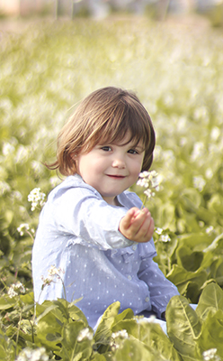 un niño sentado en un campo de flores sonrie y ofrece un flor